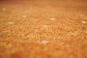 carpet wholesale